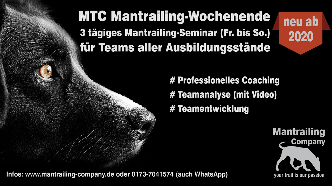 Mantrailing Wochenende - boost your skills